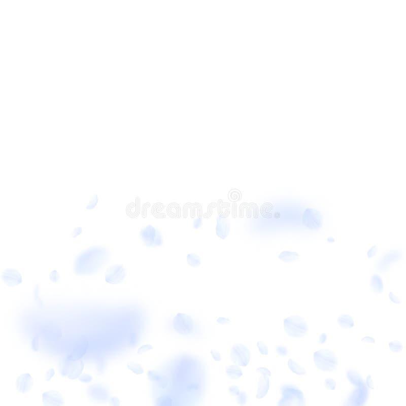 Petali blu-chiaro del fiore che cadono attraente illustrazione vettoriale