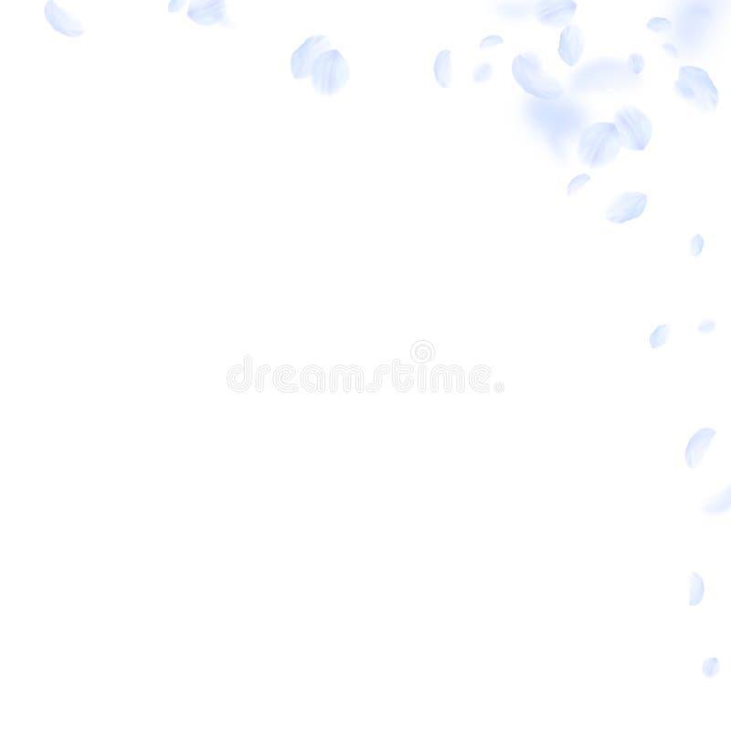 Petali blu-chiaro del fiore che cadono Ro drammatico royalty illustrazione gratis