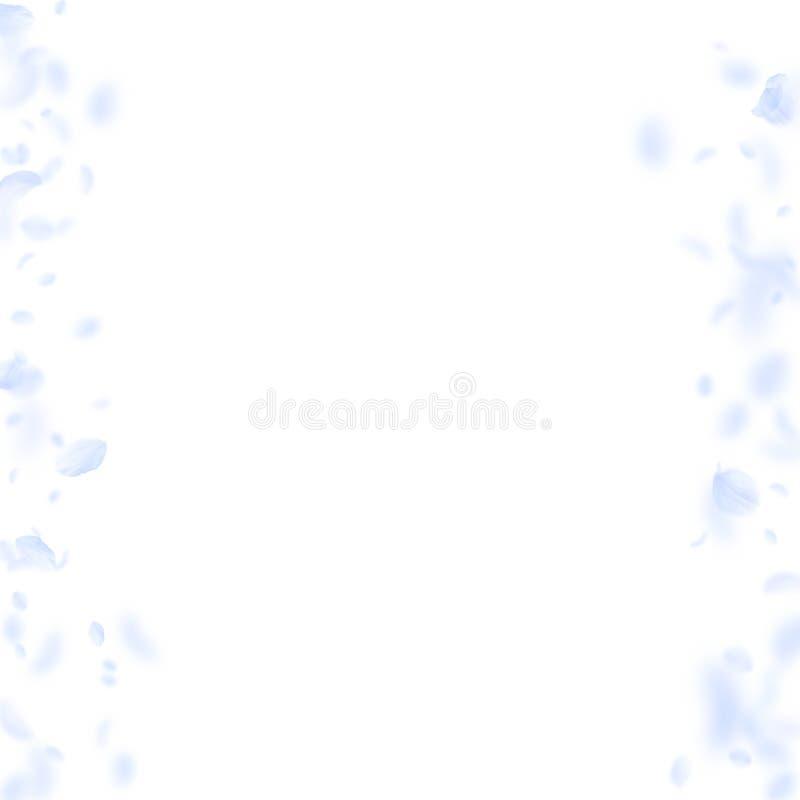 Petali blu-chiaro del fiore che cadono Ro piacevole royalty illustrazione gratis