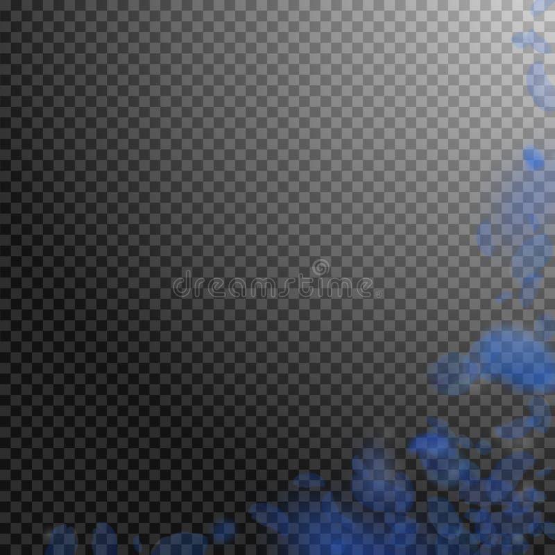 Petali blu scuro del fiore che cadono Roma piacevole a vedere illustrazione di stock