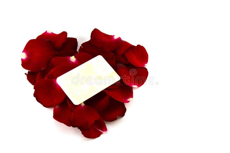Petali di rosa rossa in una forma del cuore ed in una vecchia carta isolate su bianco fotografia stock
