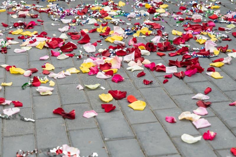 Petali di Rosa sparsi sul pavimento fotografia stock libera da diritti