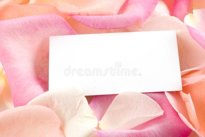 Petali e biglietto da visita di Rosa fotografie stock libere da diritti