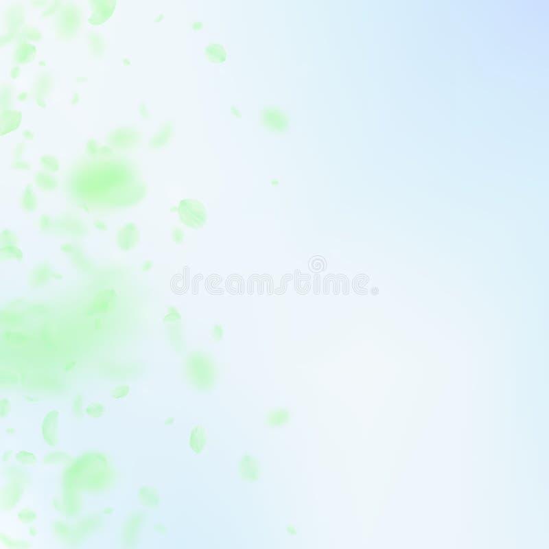 Petali verdi del fiore che cadono Appello romant illustrazione vettoriale