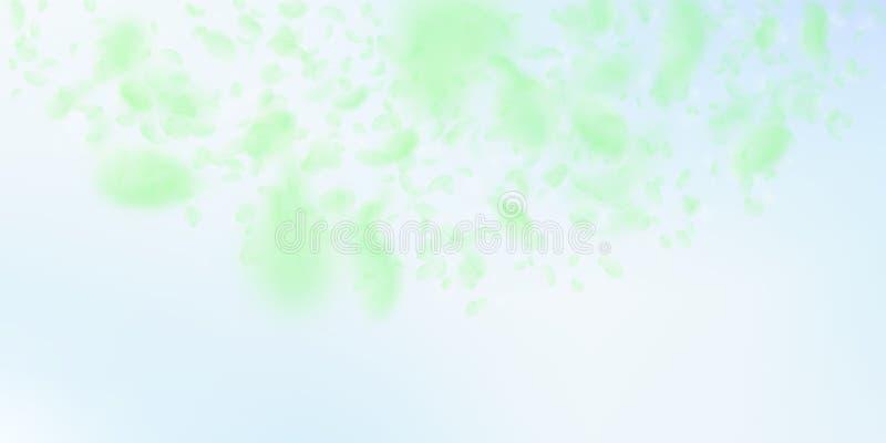 Petali verdi del fiore che cadono Romantico divino illustrazione di stock