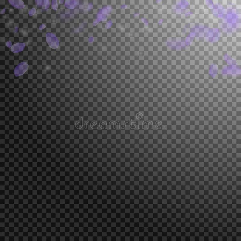 Petali viola del fiore che cadono Romano brillante royalty illustrazione gratis