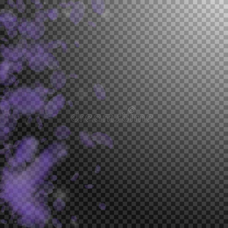 Petali viola del fiore che cadono Romant splendido illustrazione di stock
