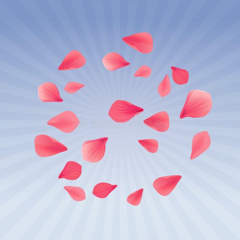 Petali volanti di sakura di rossi carmini isolati sul fondo porpora blu dei raggi di pendenza Fiori delle rose dei petali Vettore illustrazione di stock
