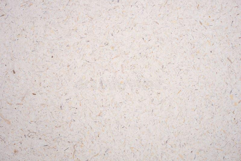Petalo marrone chiaro del fiore del gelso del riso e fondo strutturato della carta ruvida fatta a mano del seme Documento ricicla fotografie stock libere da diritti