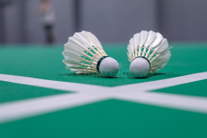 peteca do badminton do close up na corte verde imagem de stock royalty free