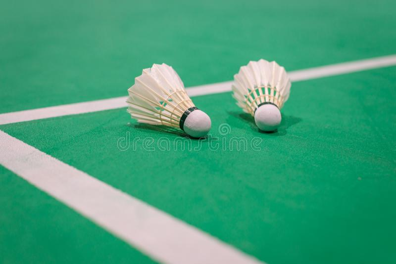 peteca do badminton do close up na corte verde foto de stock royalty free