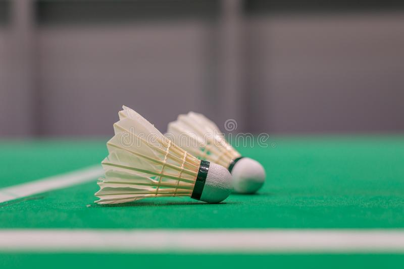 peteca do badminton do close up na corte verde imagem de stock