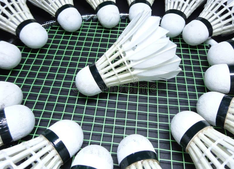 Petecas em uma raquete de badminton foto de stock royalty free