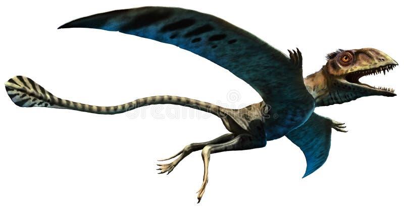 Peteinosaurus ilustração royalty free
