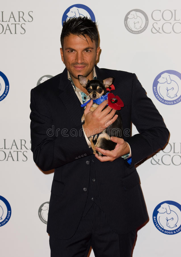 Download Peter Andre editorial image. Image of evolution, dogs - 22785645