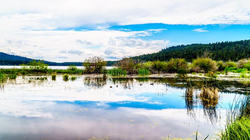 Peter Hope Lake in the Shuswap Highlands in British Columbia, Canada stock photo