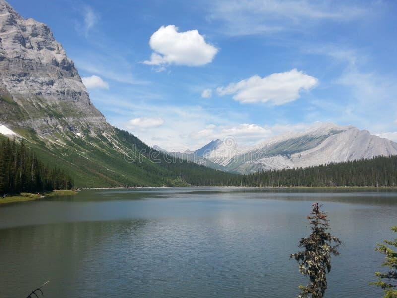 Peter Lougheed prowincjonału park Alberta zdjęcie stock