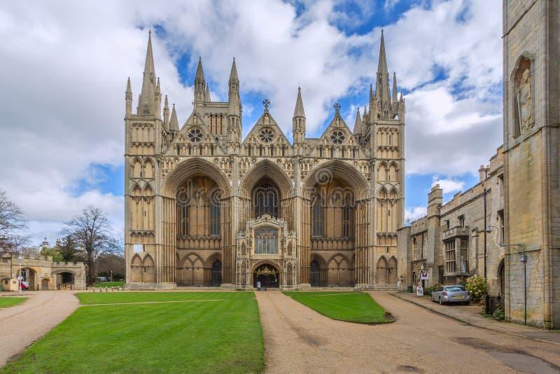 Peterboroughkathedraal stock fotografie