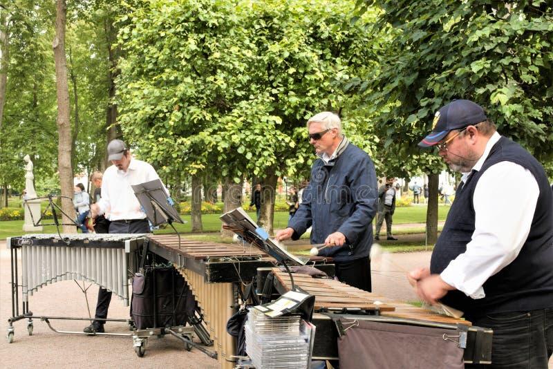 Petergof, Rússia, em julho de 2019 Os músicos da rua dão um concerto no parque imagem de stock royalty free