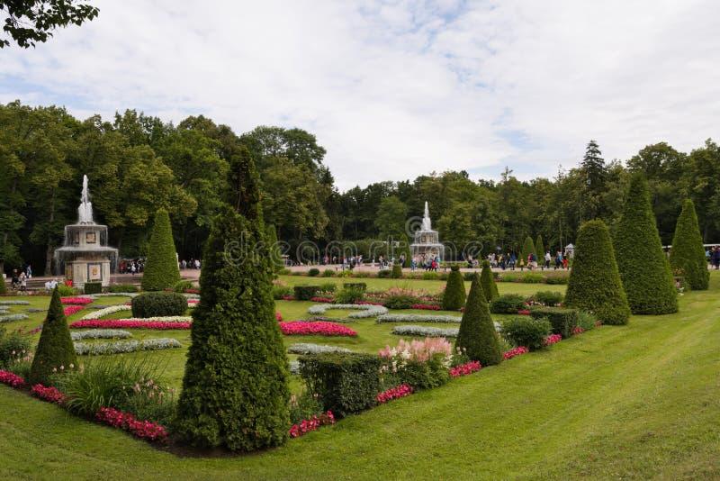 Petergof, Rússia, em julho de 2019 Parque do palácio de Vid com fontes e gramado inglês fotos de stock royalty free