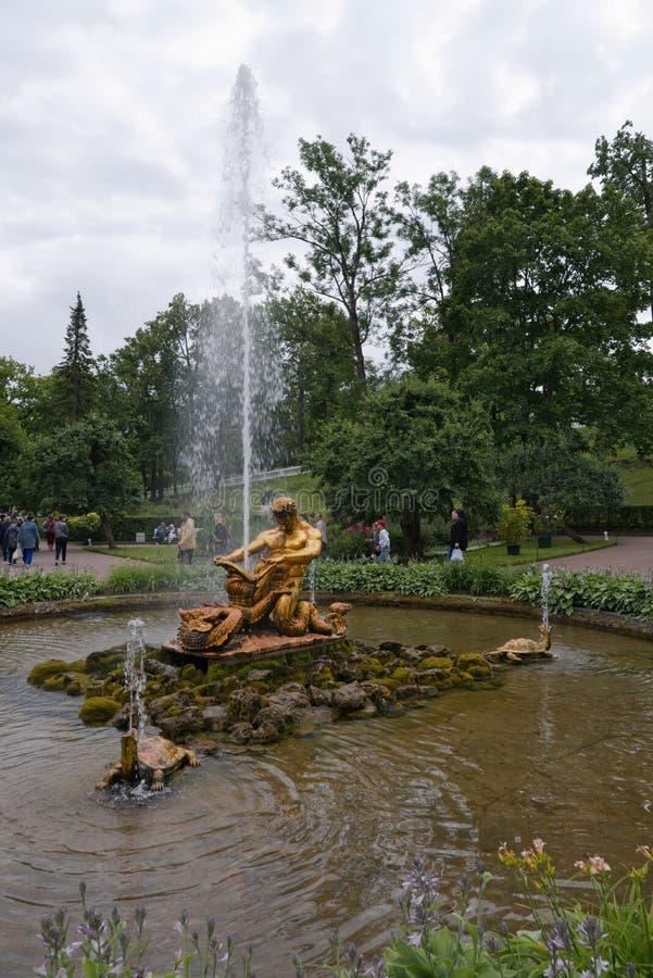 Petergof, Rosja, Lipiec 2019 Fontanna «Triton «w niskim parku fotografia stock