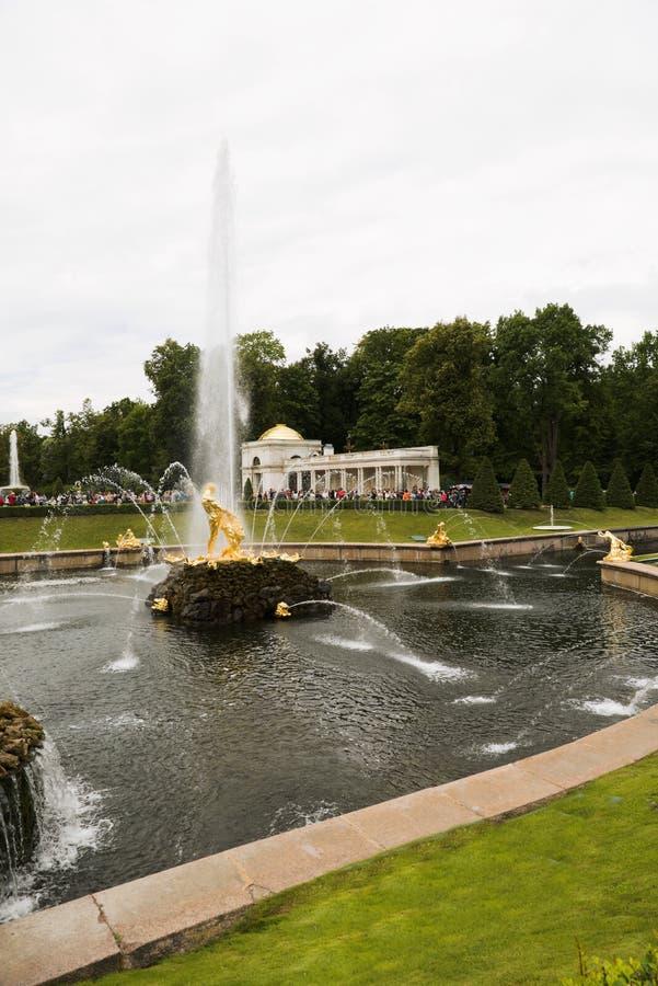 Petergof, Rusland, Juli 2019 Weergeven die van de fontein, de overwinning van Samson over de leeuw afschilderen royalty-vrije stock foto's