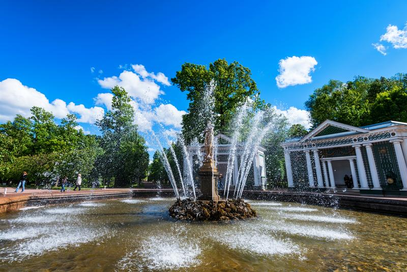 PETERGOF, RUSSLAND - 10. JUNI 2015: Schöner Brunnen in Peterhof, Russland stockbild