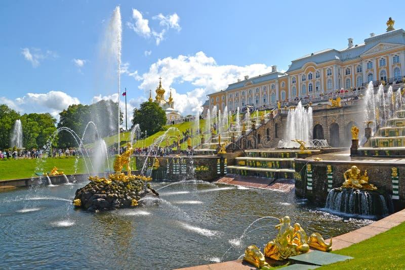 peterhof俄国 撕开狮子嘴喷泉和大小瀑布森山的看法 降低公园 免版税库存照片