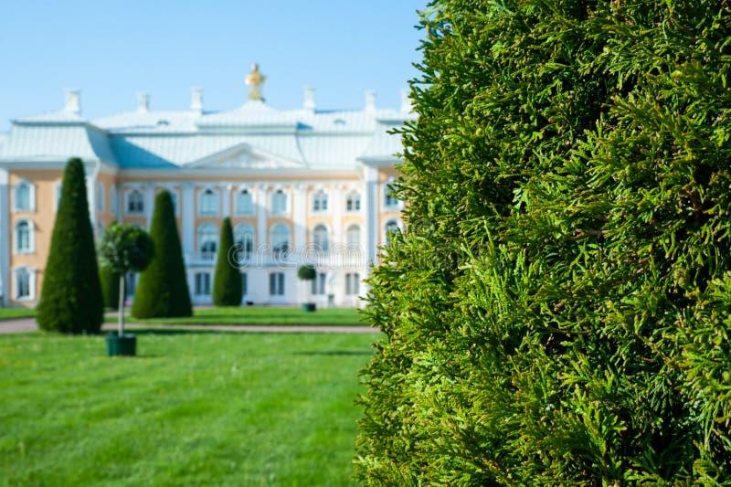 Peterhof, ŚWIĄTOBLIWY PETERSBURG ROSJA, CZERWIEC, - 06, 2019: Uroczysty Peterhof pałac w górnym ogródzie Peterhof, obrazy royalty free