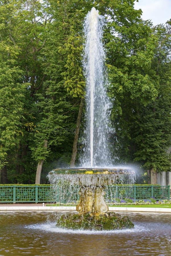 Peterhof den stora italienska springbrunnen arkivbild