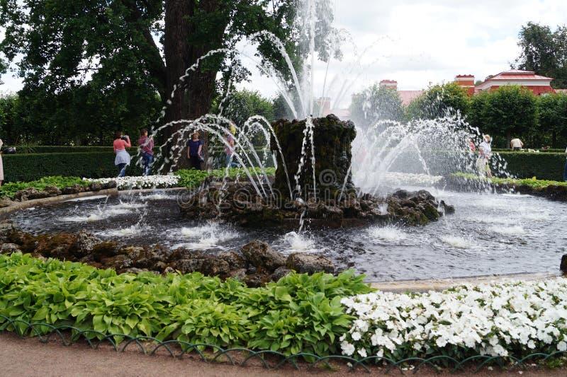 Peterhof garden royalty free stock image