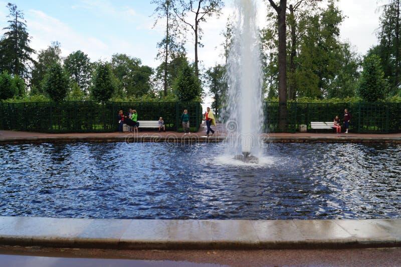 Peterhof garden royalty free stock photo