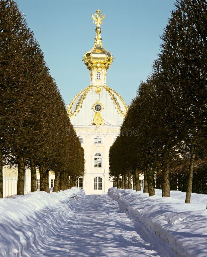 peterhof ogrodowa zima s obraz royalty free