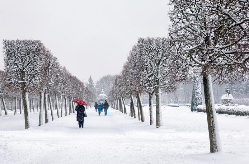 Peterhof Rússia O jardim superior imagens de stock royalty free