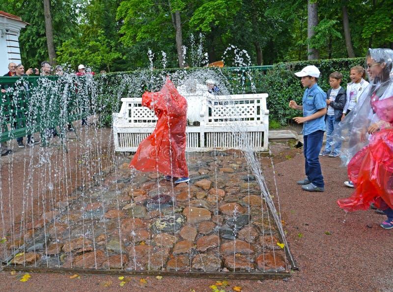 peterhof Russia Ławki fontanny krakers w Monplezirsky ogródzie zdjęcia royalty free