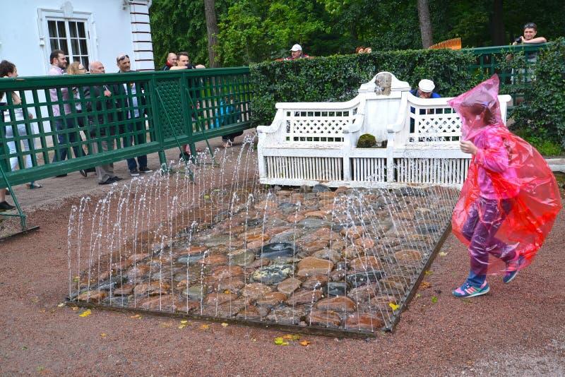 peterhof russia Bänkspringbrunnsmällaren i den Monplezirsky trädgården arkivbild
