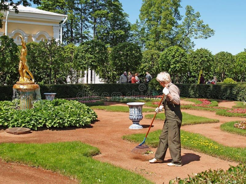 peterhof russia Den kvinnliga dörrvaktsvepavskrädet i den Monplezirsky trädgården royaltyfria bilder