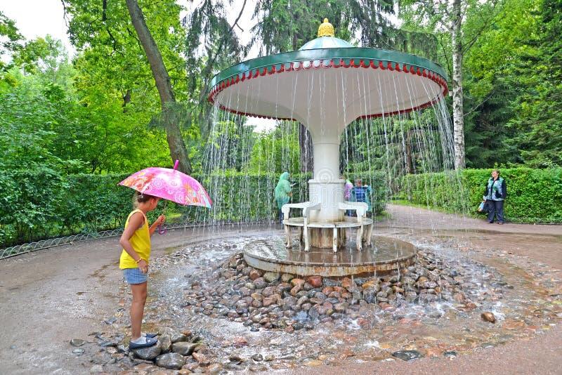 peterhof Russia Dziewczyna o Parasolowym fontanna krakersie w Nizhny parku fotografia royalty free