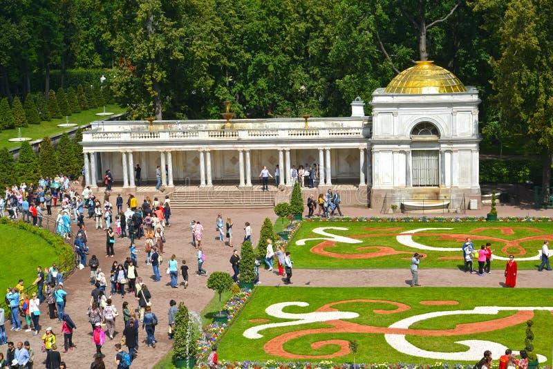 peterhof russia En sikt av den Voronikhinsky kolonnaden och den stora rabatten arkivbilder