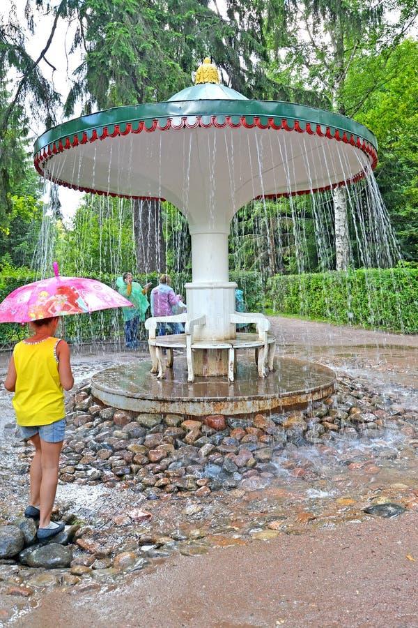 peterhof russia Flickan om paraplyspringbrunnsmällaren fotografering för bildbyråer