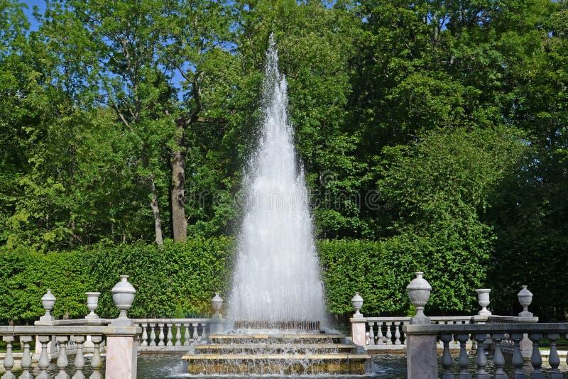 peterhof russia Pyramidspringbrunnen i en solig dag för sommar royaltyfri fotografi