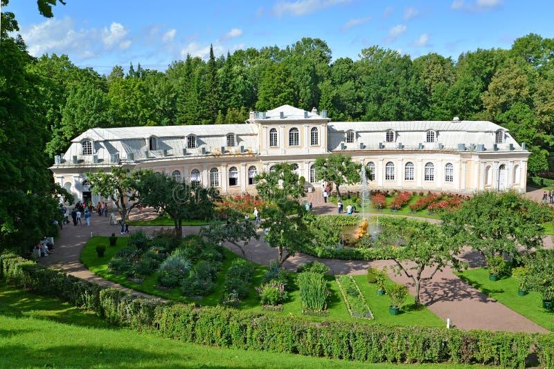 peterhof russia Sikt av det trädgårds- och stora växthuset för drivhus fäll ned parken royaltyfria bilder