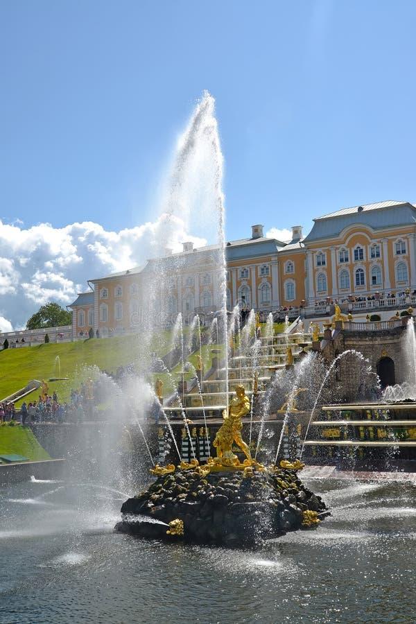 peterhof Russie Samson Who Is Tearing Apart une fontaine de Lion Mouth Abaissez le stationnement images libres de droits