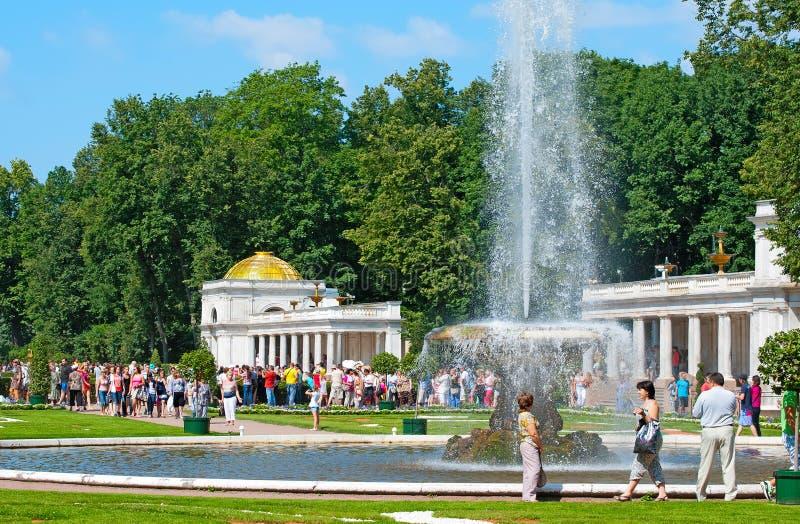 peterhof Ryssland Bunkespringbrunnen arkivbild
