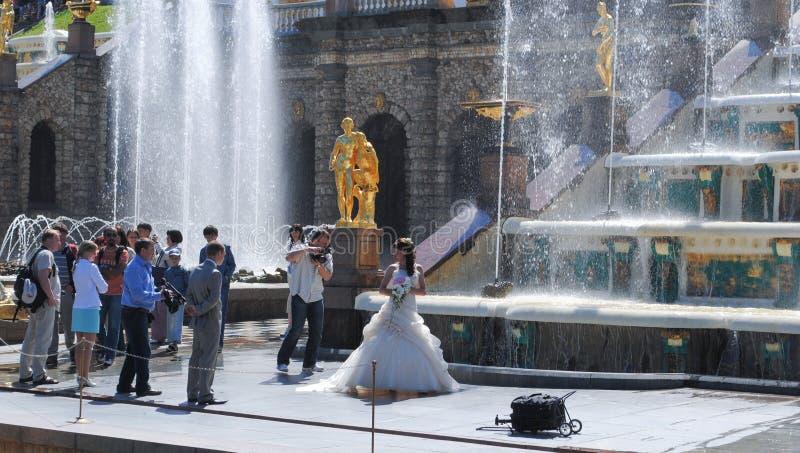PETERHOF RYSSLAND - JULI 01, 2011: Härliga guld- skulpturer i storslagen kaskadspringbrunn i Peterhof royaltyfri fotografi