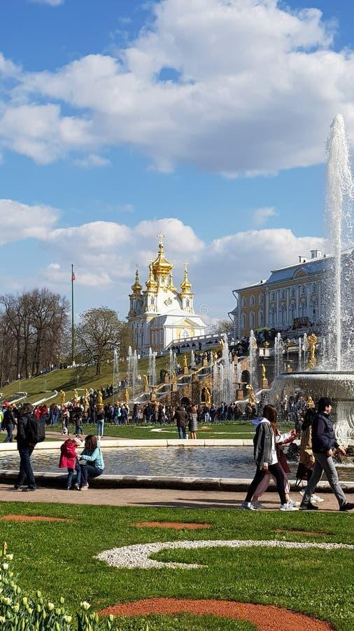 Peterhof in San Pietroburgo fotografie stock