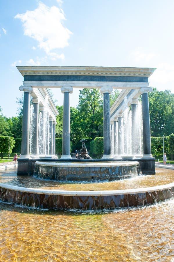 Peterhof, St Petersbourg, Fédération de Russie, le 6 juin 2019 : Fontaine de cascade de lion image stock