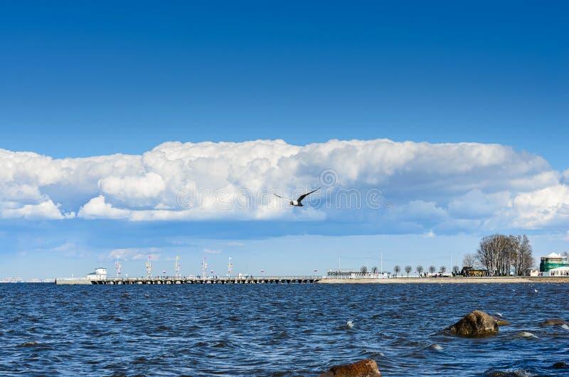 Peterhof, St Petersburg, R?ssia Vista do Golfo da Finl?ndia em um dia de mola nebuloso do conjunto do pal?cio e do parque fotos de stock royalty free