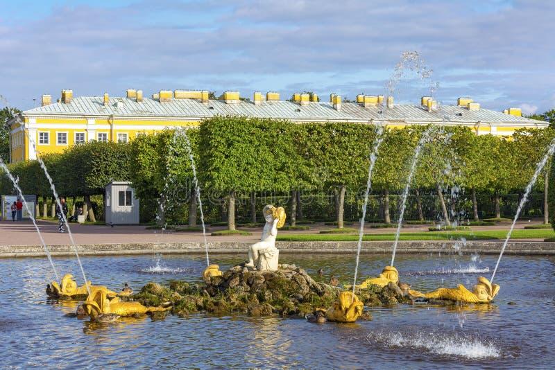 Peterhof, staw z fontanną obrazy royalty free