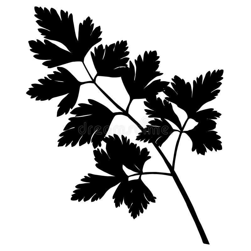 Peterseliesilhouet stock illustratie